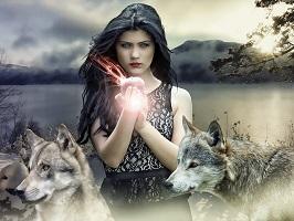 вълка